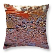 Red Rock Canyon Stones 2 Throw Pillow
