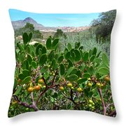 Red Rock Canyon Wild Flowers 20150525-06 Throw Pillow