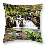 Red Rock Falls, Glacier National Park, Montana Throw Pillow