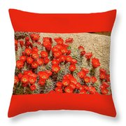Red Rock Flowers Throw Pillow