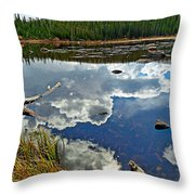 Red Rock Lake Fall Study 2 Throw Pillow