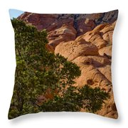 Red Rock Textures Throw Pillow
