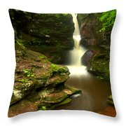 Red Rocks And Lush Green Forest Throw Pillow
