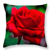 Red Rose 2 Throw Pillow