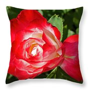 Red Rose And A Sidecar At Pilgrim Place In Claremont-california Throw Pillow