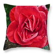 Red Rose F135 Throw Pillow