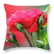 Red Rose Flower Throw Pillow