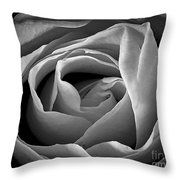 Red Rose In Infrared Throw Pillow