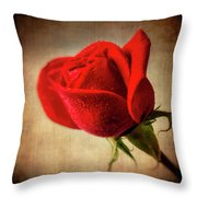 Red Rose Romance Throw Pillow