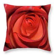 Red Rose Up Close Throw Pillow