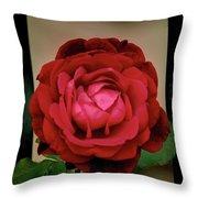 Red Rose  V2 Throw Pillow