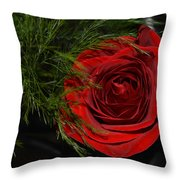 Red Rose With Garnish And Black Velvet Throw Pillow