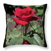 Red Rose With Stem Throw Pillow