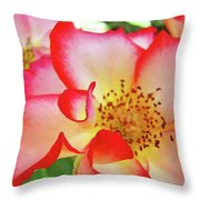Red Roses White Yellow Rose Flower Floral Art Print Baslee Troutman Throw Pillow