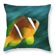 Red Sea Clownfish  Throw Pillow