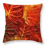 Red Sea Grapes By Sharon Cummings Throw Pillow