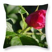 Red Semi Rose Bud Throw Pillow