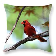 Red Sentry Throw Pillow