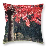 Red Shade Tree Throw Pillow