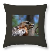 Red Shouldered Hawk - Profile Throw Pillow