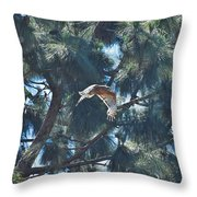 Red Shouldered Hawk Flying Away 1 Throw Pillow