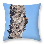 Red Shouldered Hawk On Palm Tree Throw Pillow