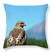 Red-shouldered Hawk With Mt. Mclaughlin In The Background Throw Pillow