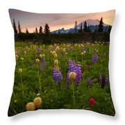 Red Sky Meadow Throw Pillow