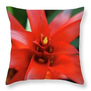 Red Spikes 2 Throw Pillow