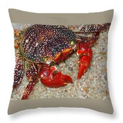 Red Spotted Crab Throw Pillow