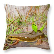 Red Spotted Newt Throw Pillow