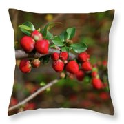 Red Spring Buds Throw Pillow