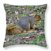 Fox Squirrel 2 Throw Pillow