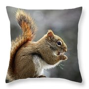 Red Squirrel On Wooden Fence II Throw Pillow