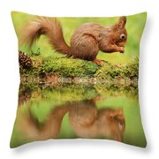 Red Squirrel Reflection Throw Pillow