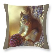 Red Squirrel With Pine Cone Throw Pillow