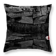 Red Stripe Express Throw Pillow