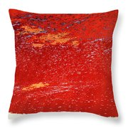 Red Surf On The Beach Throw Pillow