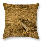 Red Tail Hawk Walking Throw Pillow