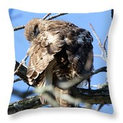 Red Tail II Throw Pillow
