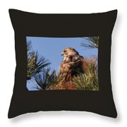Red Tail In The Pines Throw Pillow