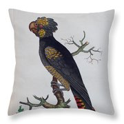 Red-tailed Black Cockatoo 1790 Throw Pillow