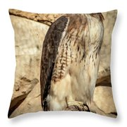Red-tailed Hawk 4 Throw Pillow