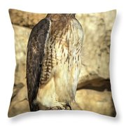 Red-tailed Hawk 5 Throw Pillow