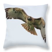 Red Tailed Hawk Finds Its Prey Throw Pillow