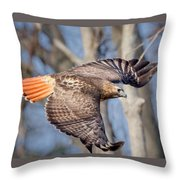 Red Tailed Hawk Flying Throw Pillow