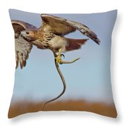 Red-tailed Hawk In Flight With Snake Throw Pillow