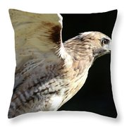 Red-tailed Hawk In Profile Throw Pillow
