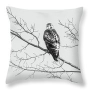 Red-tailed Hawk On Perch Throw Pillow
