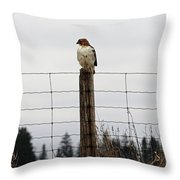 Red Tailed Hawk On The Lookout Throw Pillow